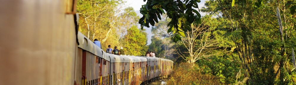 Train in Assam